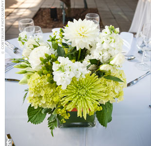 Since the conservatory gardens are so lush, the couple chose simple arrangements of ivory and green hydrangeas and roses in square glass vases.