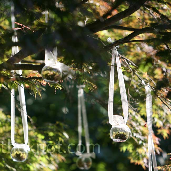 Globe vases filled with moss and candles were attached to sheer ribbon and hung from the Japanese maple at the ceremony site.