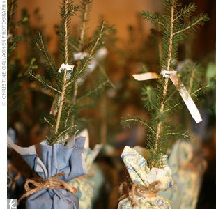 Kristi and Adam bought saplings and wrapped them in cool blue-and-green fabric for their guests. The couple even snagged a few to plant in the yard of their first home!