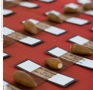 Sheer ribbon and nuts kept the guests' seating assignments in place and made for an organic look.