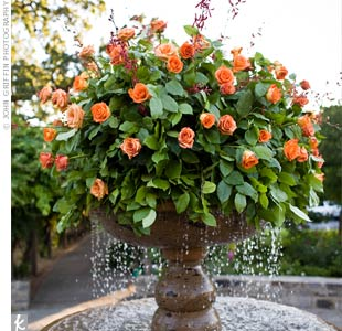 At the entrance to the winery grounds, a large arrangement of orange roses and greenery sat atop a working fountain. It helped set the tone for the rest of the décor.