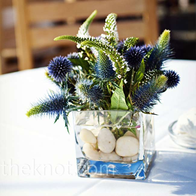 Blue thistles filled small, square vases with submerged stones for earthy, laid-back decorations.