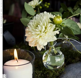 "Bobble vases with dahlias added a romantic touch to the arrangements of moss and river rocks at Shelly and Todd's wedding. ""I wanted to use the river rock because we really wanted to have a natural feel in this very urban setting,"" the bride explains."