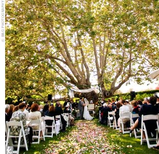 The ceremony took place beneath a big sycamore tree, and Carrie's dad cut the bamboo for the couple's huppah right from their backyard.  Adding another personal touch, the poles were draped with Carrie's grandmother's tablecloth.