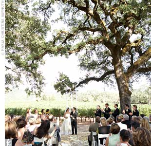 Guests were brought through the vineyards via limo buses to an oak grove called Fox Hill, where the ceremony took place beneath a large tree.