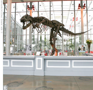 The California Academy of Sciences is not only impressive on the inside -- the structure itself, from the basement to the roof, is eco-friendly.