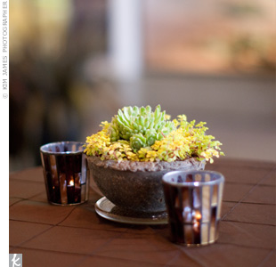 On other tables, the same wooden containers displayed colorful arrangements of succulence surrounded by flickering votive candles.