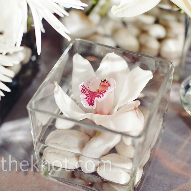 Delicate cymbidium orchids floated above smooth pebbles in short, square vases.