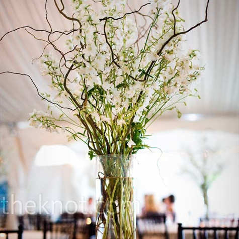 Willow Tree Decor