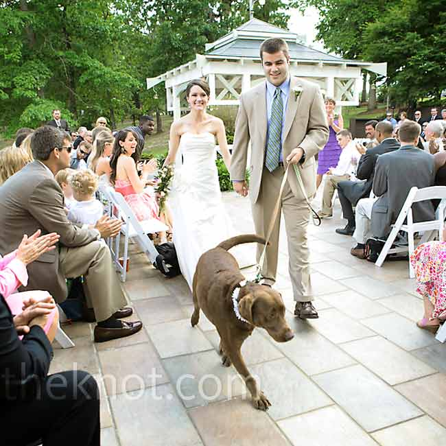 Brandi bought her sleek wedding dress off-the-rack, but she had it altered to have a sweetheart neckline and a cinched waist. The couple exited the ceremony with their 4-year-old lab, Pickles, who wore a daisy embellished collar that Brandi had made.