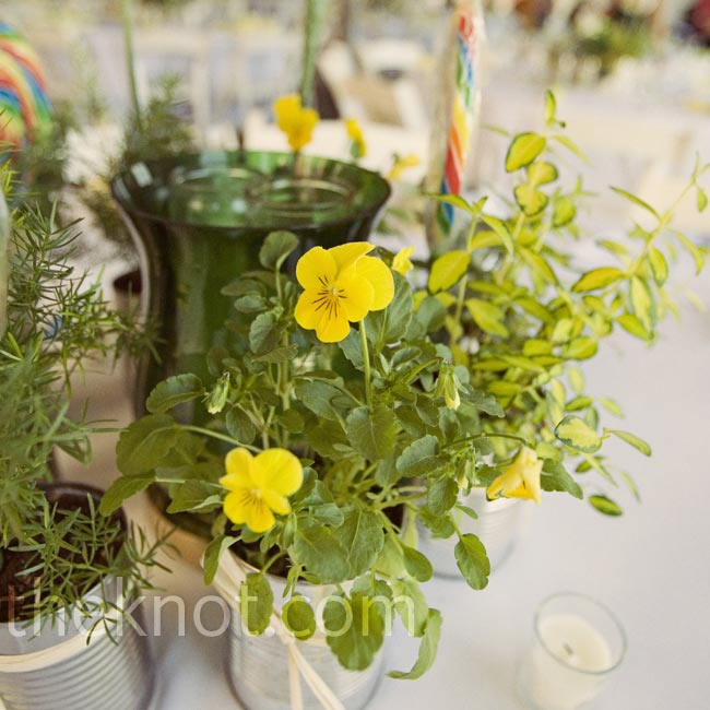 The eco-friendly centerpieces were a labor of love: A week before the wedding, Eagen, her mom, sister, aunts, and bridesmaids bought flats of flowers and plants including yellow violas, snapdragons, dusty miller, ferns, and potting soil. Then they spent an afternoon planting the flowers into tin cans and tying raffia around each one.