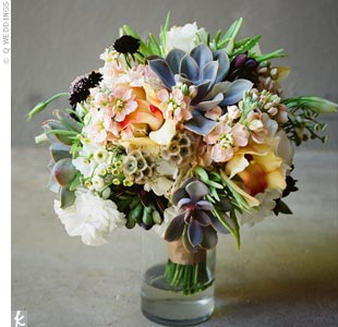 Chelle's bouquet had peach cymbidium orchids, peach stock, white lisianthus, burgundy scabiosa, and succulents.
