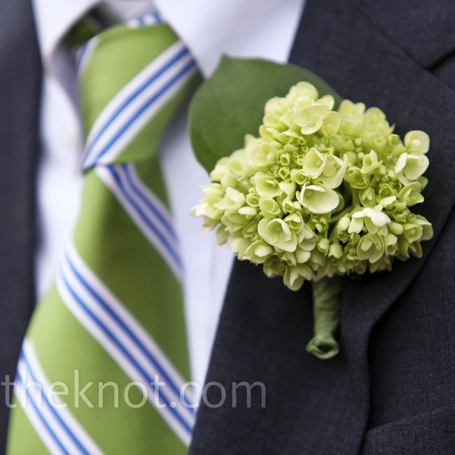 A small cluster of green hydrangeas complemented Tim's green-and-blue striped tie and gray suit.
