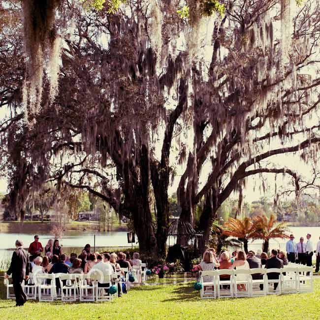 Ceremony Under A Tree