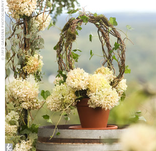 Two wine barrels, which displayed baskets of dried hydrangea, flanked the metal arbor with the same antiqued flower.