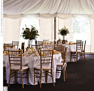Vintage-looking wrought iron chandeliers lit the draped fabric tent.