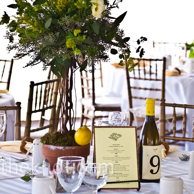 Topiary trees of lisianthus, herbs, curly willow and lemons were accented with wine-bottle table numbers and corkboard menu cards.