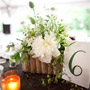 Natural Woodsy Centerpieces