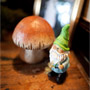 Mushroom and Gnome Decor