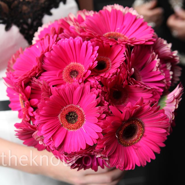Amy carried a full bouquet of oversize pink gerbera daisies, one of her favorite blooms.