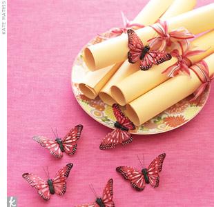 Butterfly Programs