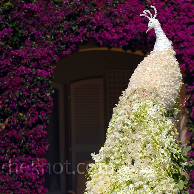 For a wedding in the south of France, Preston created this white floral peacock that stood 12 feet tall.Photo: John Labbe