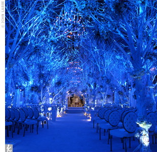Melissa Rivers' Winter Wonderland Wedding