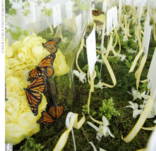 For a touch of whimsy, Bryan created a butterfly terrarium to house this escort card display.
