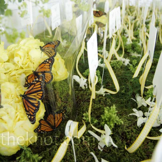 For a touch of whimsy, Bryan created a butterfly terrarium to house this escort card display.  Photo: Ron Lynch Photography