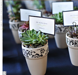 The potted succulent favors doubled as escort cards. Kira and her mom planted the succulents early in the year and then moved them into these pots.