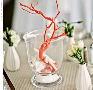 Coral and Seashell Centerpieces