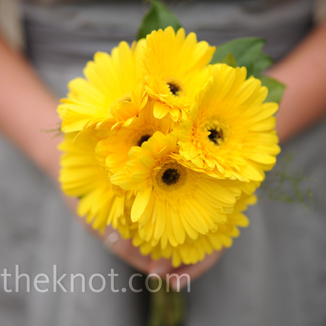 Each bridesmaid carried a monochromatic bouquet of all one type of flower. This one had gerbera daisies.