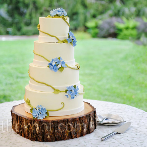 Flower and Vine Cake
