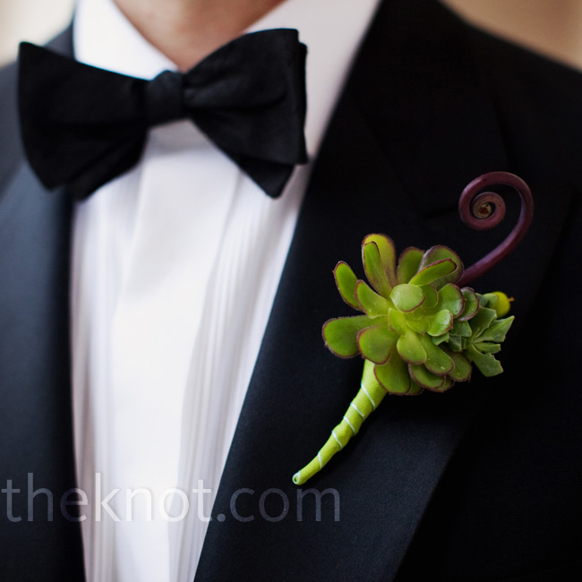 Kristen loves succulents, so Jeff specifically requested to wear one on his lapel. A fiddlehead fern added a whimsical touch.