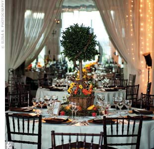 Tall topiary trees surrounded by gourds and orange and yellow blooms topped tables in the ballroom.