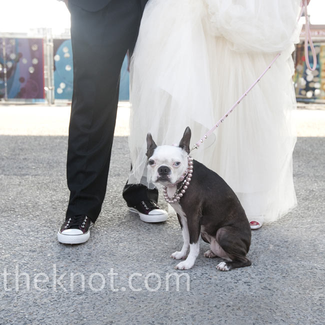 The couple's pup matched the bridesmaids in a pink necklace.