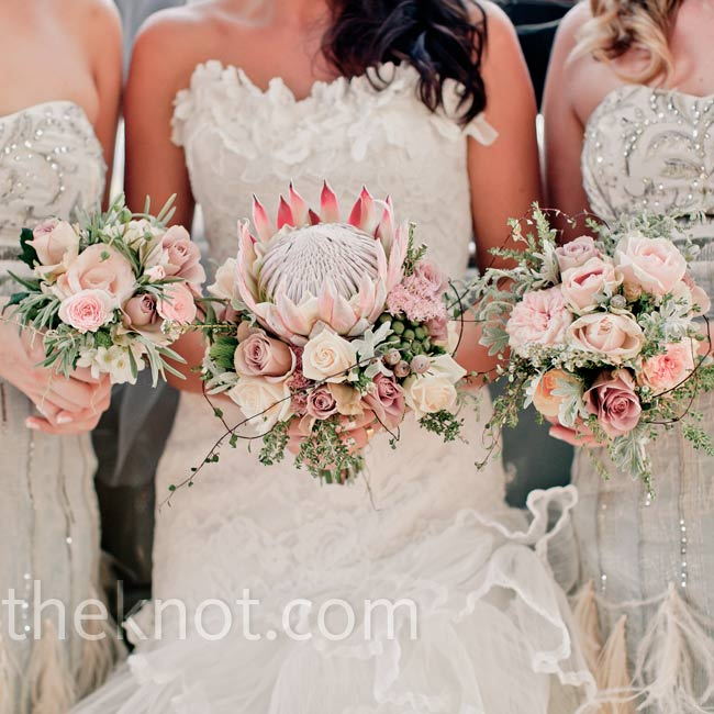 Protea Wedding Flowers: 301 Moved Permanently