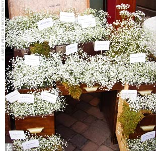 The escort cards were displayed in the open drawers of a vintage desk filled with cascading baby's breath and mosses.