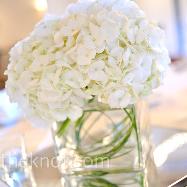 Simple square vases on each table held soft bunches of white hydrangeas with a touch of greenery.