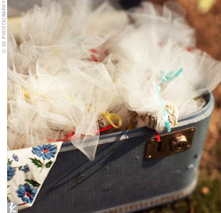 A blue suitcase that belonged to Kelley's grandmother held packets of birdseed for the reception exit.