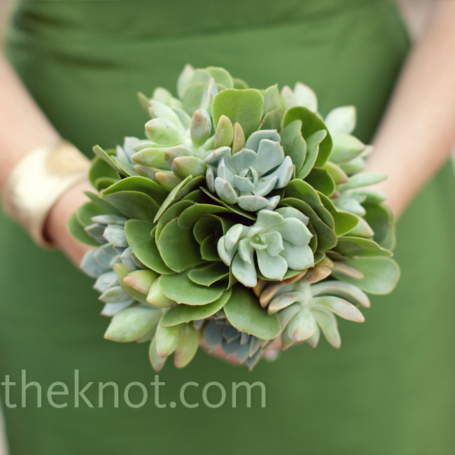 For a monochromatic look, the bridesmaids carried all-green succulent bouquets.