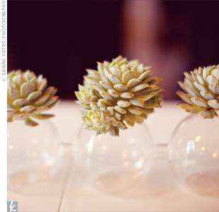 For a minimalist look, simple glass orb vases held single succulents.