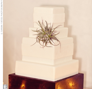 An air plant topped the couple's gluten-free red velvet cake with buttercream icing.