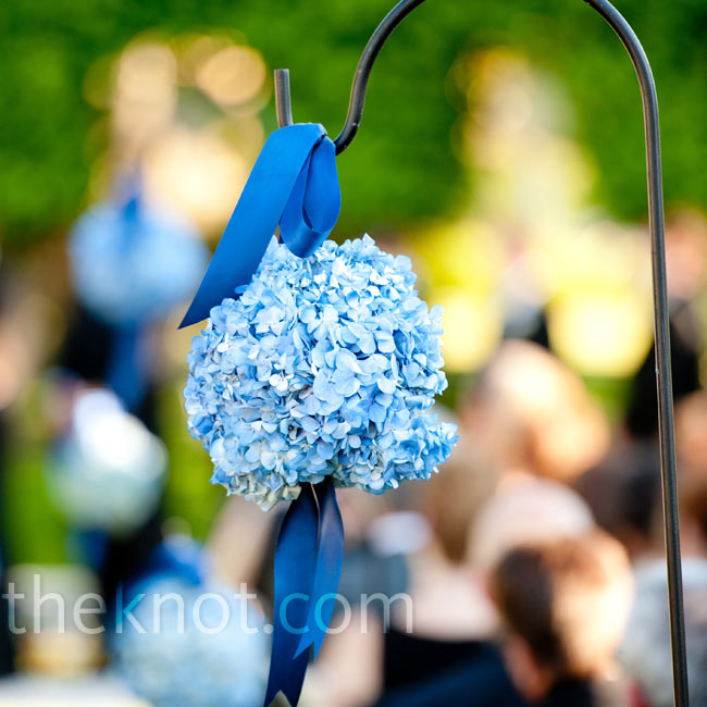 Blue hydrangea kissing balls hung from shepherd's hooks along the aisle.
