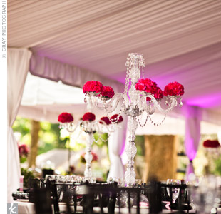 Tall crystal candelabras with hot pink flower balls sat on each of the tables.