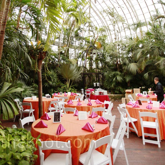 Bright linens, along with the tropical greenery lining the Palm House, gave the party a hint of the exotic.