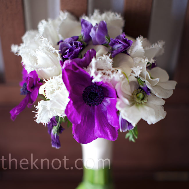 Purple and white anemones, ruffled parrot tulips and sweet peas wrapped in ivory fabric made up the romantic bridal bouquet.