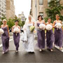 Violet Chiffon Dresses