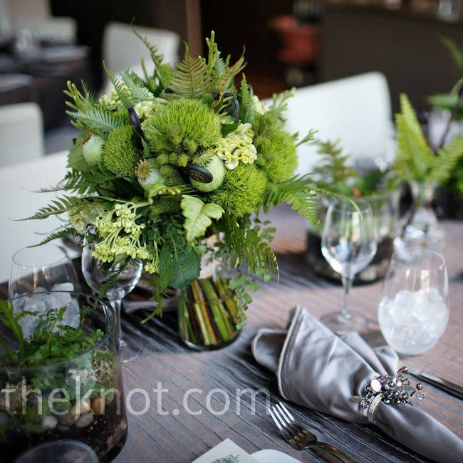 Arrangements of ferns 