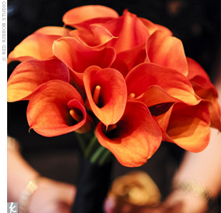 Each bridesmaid carried a tightly packed bouquet of different flowers in bright hues, including this deep orange bouquet of calla lilies.